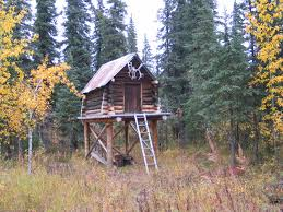 cabin on stilts