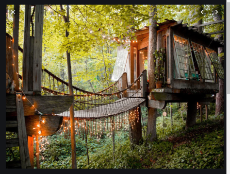 Airbnb treehouse with lights cr