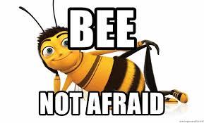 Bee Not Afraid